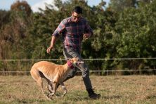 Alex Mahadevan runs with his adopted greyhound Tiki in a horse pasture in Parrish, Fla.