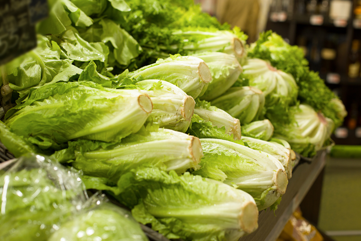 A stack of lettuce at the grocery store.